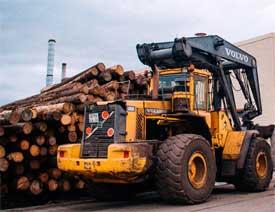 Завод «Красный октябрь» заказал Raute оборудование для производства фанеры на 18 млн. евро